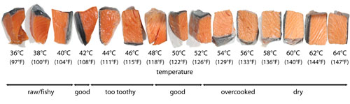 salmontemperatures